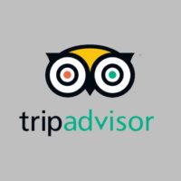 Logo_TripAdvisor_350_350_Grey